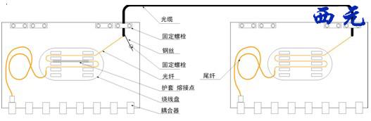 接线盒的网线接法图解